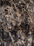 Itallian Marble Stock Image
