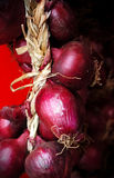 Italy, area Calabria,  Red onion of Tropea (Cipolla rossa) Stock Photos