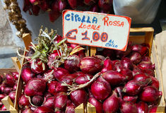Italy, area Calabria,  Red onion of Tropea (Cipolla rossa) Royalty Free Stock Photography