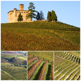 Italy. Castle of Grinzane Cavour as seen through vineyards in Piedmont Royalty Free Stock Photography