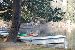 Italy, Rome. Christmas in Rome. Italy, Christmas in Roma. Tourist part of the city. A holiday in Rome. Mussolini Park, boats on the lake. Part of nature in a royalty free stock images