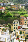 Italy. Cinque Terre. Riomaggiore village Royalty Free Stock Images