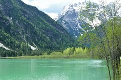 The wonderful Braies lake in the Dolomites in spring with the mountains still covered in snow. Italy is a country with many wonderful places and the Dolomites Royalty Free Stock Photo
