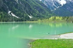The wonderful Braies lake in the Dolomites in spring with the mountains still covered in snow. Italy is a country with many wonderful places and the Dolomites Royalty Free Stock Images