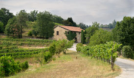 Italy country side Royalty Free Stock Photo