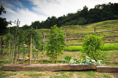 Italy country side Royalty Free Stock Photos