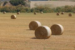 Italy countryside Royalty Free Stock Photography