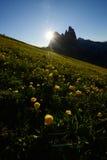 Italy dolomite at seceda Royalty Free Stock Photos