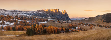 Italy. Dolomites. Autumn landscape with bright colors, house and larch trees in the soft sunlight. Royalty Free Stock Photography