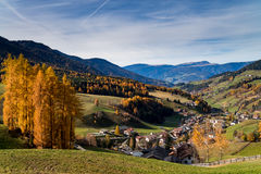 Italy. Dolomites. Autumn landscape with bright colors, house and larch trees Stock Photography