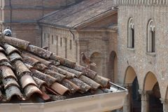 italy Duvor sitter antikviteten på ett belagt med tegel tak royaltyfria bilder