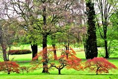 Italy in the early spring, the park in Tuscany Stock Photos