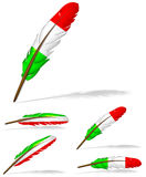 Italy flag feather Stock Image