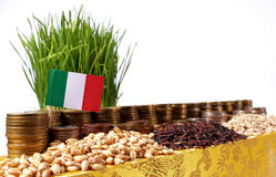 Italy flag waving with stack of money coins and piles of wheat Royalty Free Stock Photography