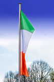 Italy flags with flagpole Royalty Free Stock Images