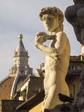 Italy,Florence, David of Michelangelo. Royalty Free Stock Photos