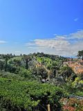 Italy Florence trees countryside green travel landscape Firenze day country royalty free stock photos