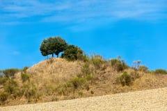 Italy. Green hills Stock Photo