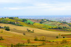 Italy. Hills Bertinoro. Stock Photos
