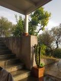 Italy house garden stock photo