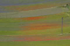 italy krajobraz Obraz Stock