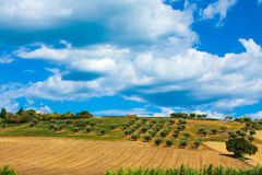 Italy landscape view with clouds on blue sky, Italian fields. Stock Images