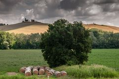 italy landscapes tuscany fotografering för bildbyråer