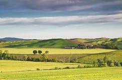 italy Landskap av Tuscany royaltyfria bilder