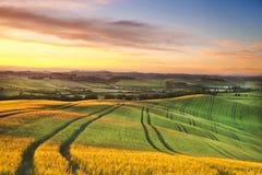 italy Landskap av Tuscany på gryning arkivfoto
