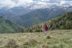 Woman hiking up valley Royalty Free Stock Photography
