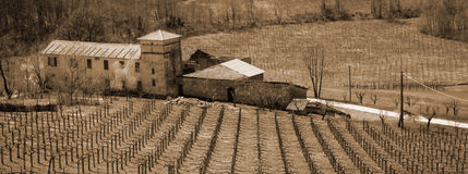 Italy. Liguria. Italian vineyard with villa Stock Images