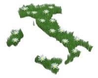 Italy made with grass and many daisy Stock Photos