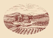 Italy Paisagem rural italiana Entregue o vinhedo tirado do vintage do esboço, exploração agrícola, agricultura, cultivando Foto de Stock