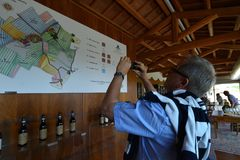 Italy, Piedmont, Langhe, wine tourists at `Cascina Monfalletto`. Italy, Piedmont, Langhe, circa August 2016, wine tourists at `Cascina Monfalletto stock image