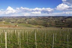 Italy: Piemontese landscape Royalty Free Stock Photo