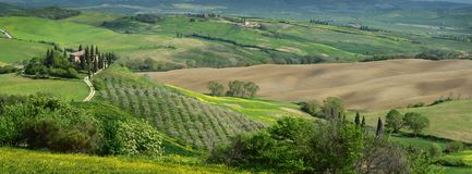 Italy, Pienza - April 24 2018: Beautiful Tuscan landscape with green hills at Podere Belvedere near Pienza stock photos