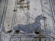 italy Pompei Obraz Royalty Free