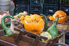 Italy. Pumpkin smiles for sale Stock Images