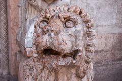 Italy, Ravenna lion statue Royalty Free Stock Photos