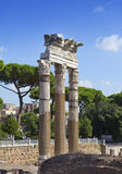 Italy. Rome. Ruins of an antique temple of Venus Stock Images