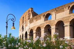 Italy. Rome. The Ancient Collosseo Stock Image
