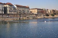 italy rzeka po Turin Fotografia Royalty Free