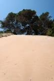 Italy, sand dune on the coast of Gargano Royalty Free Stock Image