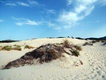 Italy, Sardinia, Carbonia Iglesias, Porto Pino, the dunes beach. Sardinia, Carbonia Iglesias, Porto Pino, the dunes beach Royalty Free Stock Photo