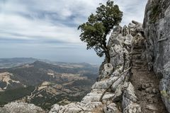 Italy, Sardinia hiking stock images
