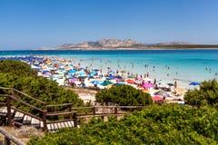 Italy,Sardinia ,Stintino royalty free stock photo