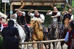 Italy_South Tirol imagem de stock royalty free