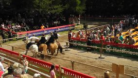 Italy, South Tyrol, equestrian event stock footage