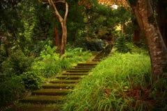 italy stary serii schody kamień Zdjęcia Royalty Free