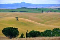 italy Tuscany Obrazy Royalty Free